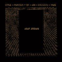 Cover Asaf Avidan - Little Parcels Of An Endless Time