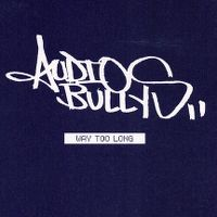 Cover Audio Bullys - Way Too Long