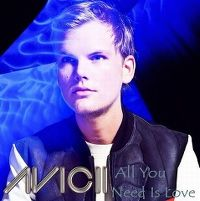 Cover Avicii - All You Need Is Love