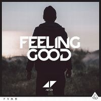 Cover Avicii - Feeling Good