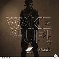 Cover Avicii - Wake Me Up!