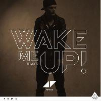 Cover Avicii - Wake Me Up!