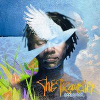 Cover Baaba Maal - The Traveller