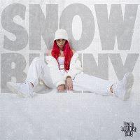 Cover badmómzjay - Snowbunny