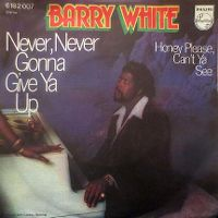 Cover Barry White - Never, Never Gonna Give Ya Up