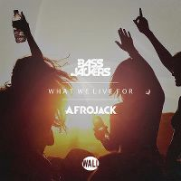 Cover Bassjackers & Afrojack - What We Live For