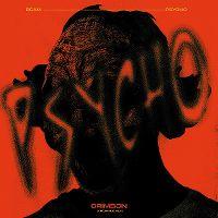 Cover Beam - Psycho