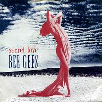Cover Bee Gees - Secret Love
