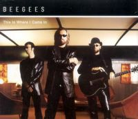 Cover Bee Gees - This Is Where I Came In