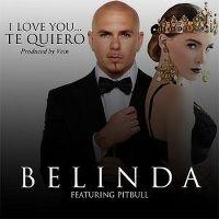 Cover Belinda feat. Pitbull - I Love You... Te quiero