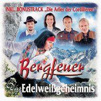 Cover Bergfeuer - Das Edelweißgeheimnis