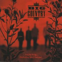 Cover Big Country feat. Eddi Reader - Fragile Thing