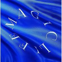 Cover Bilderbuch - Magic Life