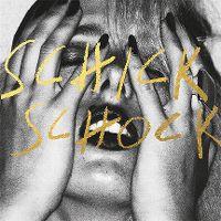 Cover Bilderbuch - Schick Schock