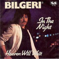 Cover Bilgeri - In The Night