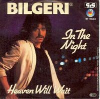 Cover Bilgeri - In The Night