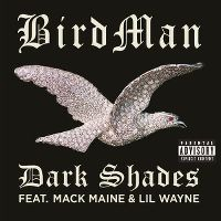 Cover Birdman feat. Mack Maine & Lil Wayne - Dark Shades