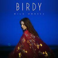 Cover Birdy - Wild Horses