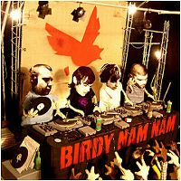 Cover Birdy Nam Nam - Birdy Nam Nam