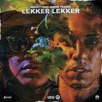 Cover Bizzey feat. Jonna Fraser - Lekker lekker