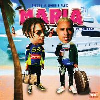 Cover Bizzey & Ronnie Flex feat. $hirak - Maria