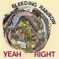 Cover Bleeding Rainbow - Yeah Right