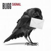 Cover Bligg - Signal