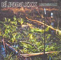 Cover Bligg'n'Lexx - Nahdisnah