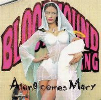 Cover Bloodhound Gang - Along Comes Mary