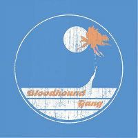 Cover Bloodhound Gang - Screwing You On The Beach At Night
