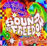 Cover Bob Sinclar & Cutee B feat. Gary Pine And Dollarman - Sound Of Freedom