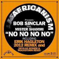 Cover Bob Sinclar feat. Mister Shammi - No No No No
