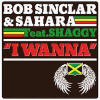 Cover Bob Sinclar & Sahara feat. Shaggy - I Wanna