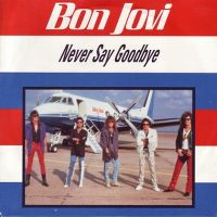 Cover Bon Jovi - Never Say Goodbye