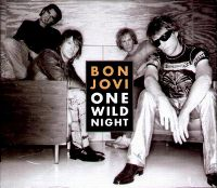 Cover Bon Jovi - One Wild Night