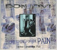 Cover Bon Jovi - Something For The Pain