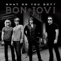 Cover Bon Jovi - What Do You Got?
