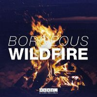 Cover Borgeous - Wildfire