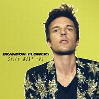 Cover Brandon Flowers - Still Want You