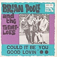 Cover Brian Poole & The Tremeloes - Could It Be You?