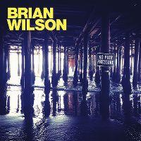 Cover Brian Wilson - No Pier Pressure