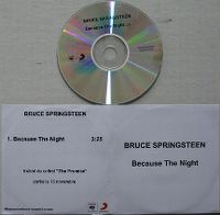 Cover Bruce Springsteen - Because The Night (Live)