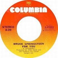 Cover Bruce Springsteen - For You