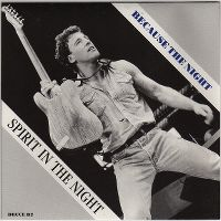 Cover Bruce Springsteen & The E Street Band - Because The Night (Live)