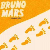 Cover Bruno Mars - Runaway Baby