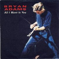 Cover Bryan Adams - All I Want Is You