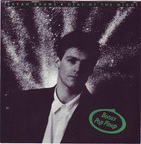 Cover Bryan Adams - Heat Of The Night