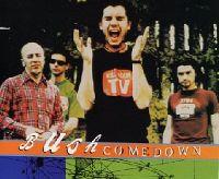 Cover Bush - Comedown