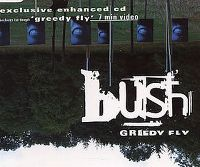 Cover Bush - Greedy Fly
