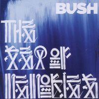 Cover Bush - The Sea Of Memories